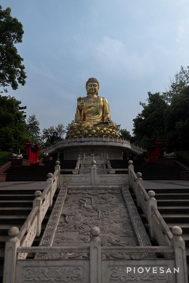 False Idol in China